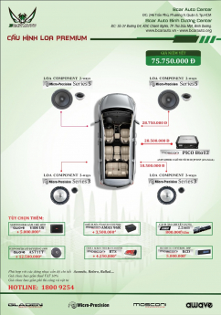 Cấu hình âm thanh Premium 6